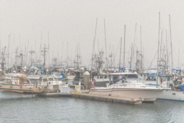 Spud Point Marina - Creative Vision