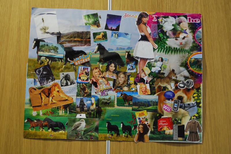 Sohini's collage