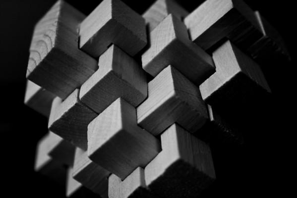 2010_07_22 Wooden Puzzle