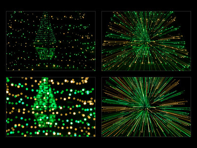 _tree bokeh intentional camera movement blur