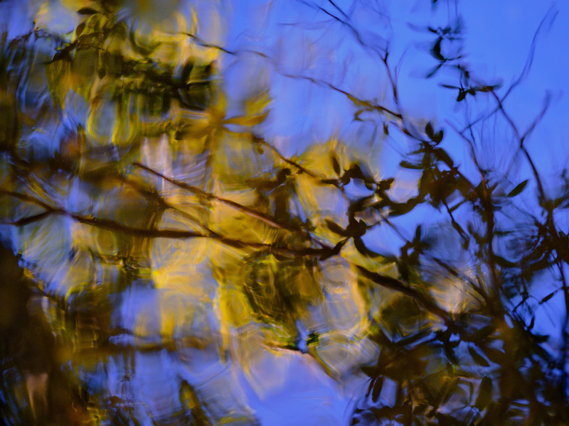 Rocky Creek Reflections