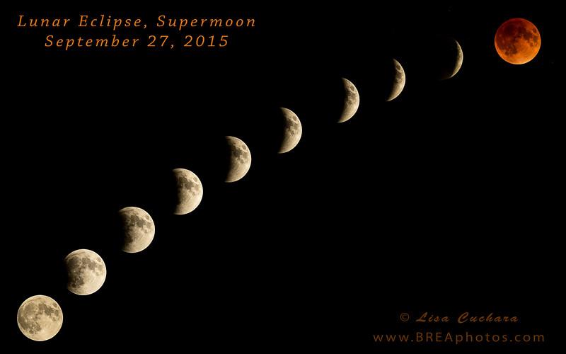 eclipse 2015 title