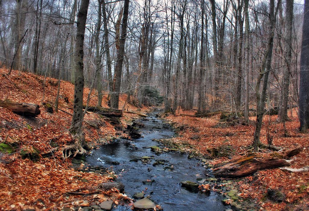 Catskill waters