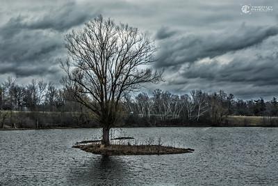 TJP-1068-Woodlands-158-HDR-Edit