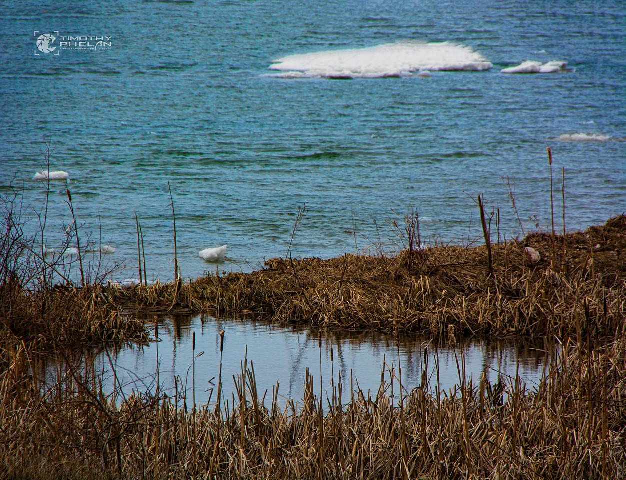 TJP-1068-Woodlands-262-Edit-Edit