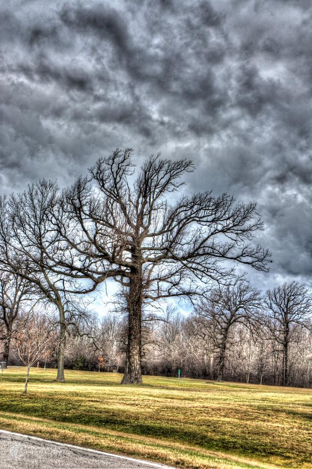 TJP-1068-Woodlands-318_19_20-Edit