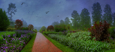Longwood foggy sept morning Panorama1d
