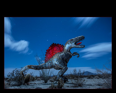 Dinosaur under the night sky