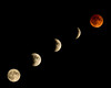 eclipse 2015 five phases