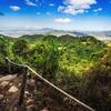 The Tarantula Trail - Tim Martin