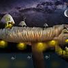 Fungi Castle
