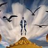 I wish I could fly like the birds