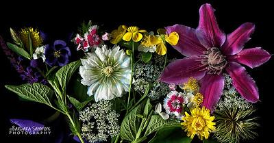 Morning Garden Flowers