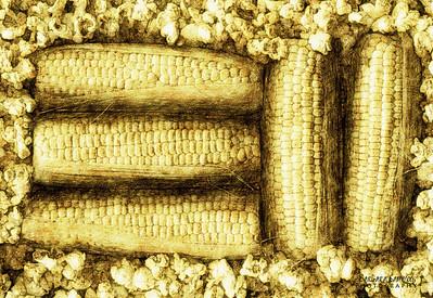 Pop - Fresh corn and popcorn