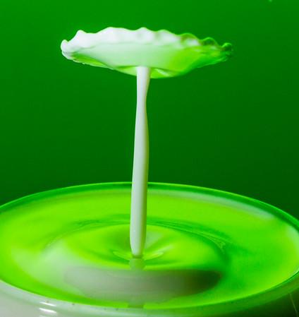 Milk-0020z