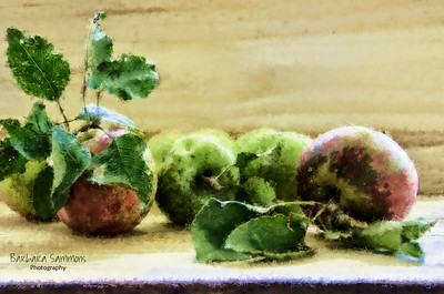 Home Grown Apples on Wooden Board