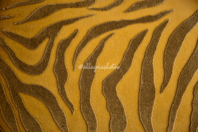 Tiger-patterned fabric, Fathipore Sikri, India