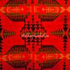 Native American fabric pattern