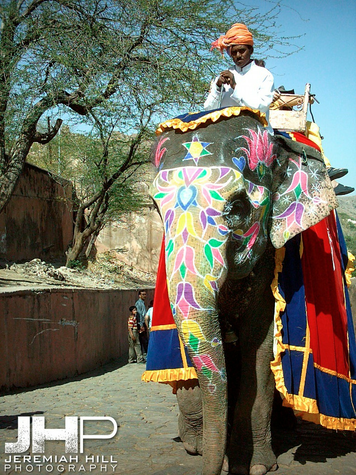 """Painted Elephant and Rider"", Amber Fort, Jaipur, Rajasthan, India, 2005 Print INDIA9-144"