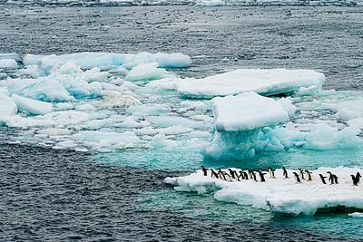 What Happens When This Ice Melts  Copyright 2020 Steve Leimberg UnSeenImages Com _DSC9193