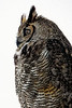 Late Night Owl Visit - Copyright 2017 Steve Leimberg - UnSeenImages Com _A6I0217