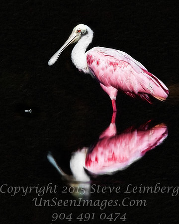 Perfect Roseate Spoonbill  - PAINTING - 24 x 30 Copyright 2016 Steve Leimberg - UnSeenImages Com _Z2A1554