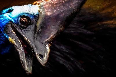 Cassowary Painting Copyright 2020 Steve Leimberg UnSeenImages Com _DSC3272