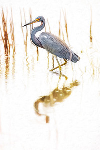 Blue Heron Painting Copyright 2020 Steve Leimberg UnSeenImages Com _Z2A4388