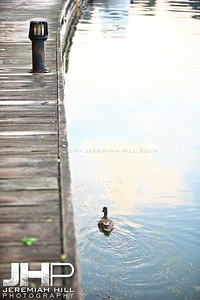 """Couchiching Boardwalk #2"", Orillia, ON, Canada, 2011 Print JP11-93-354"