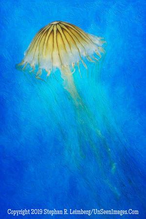 Jellyfish II - PAINTING Copyright 2014 Steve Leimberg - UnSeenImages Com _H1R2227