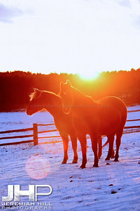 """Red and Lady by Sunset #3"", Hillsdale, ON, Canada, 2011 Print JP11-1210-106V3"