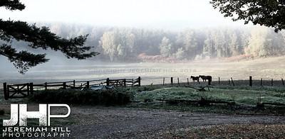 """Hillsdale Morning Fog"", Hillsdale, ON, Canada, 2011 Print JP11-104-001V2"