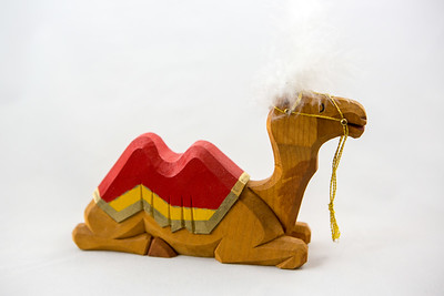 Camel Lying Down