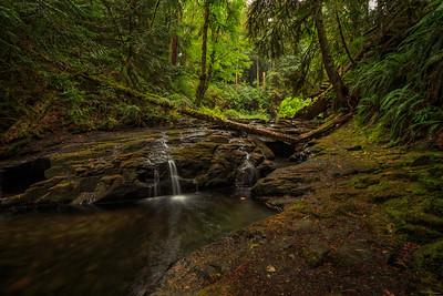 Lower Stocking Creek
