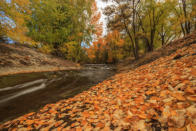 Penticton Creek Autumn Spillway