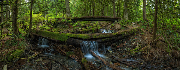 Bridal Creek Log Cascade Panoramic