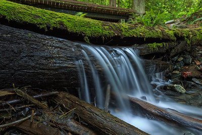Bridal Creek Log Falls