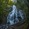 Cascade Falls Vertical Pan