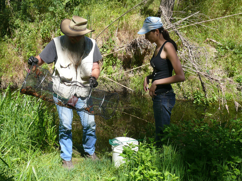 Jim and Helena inspect the catch from the first trap.