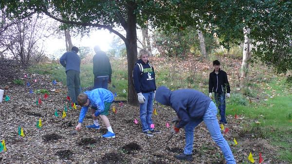 171230 Eagle Scout planting