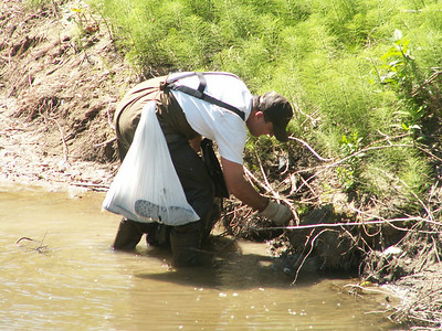 Creek Cleanup