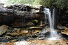 After picking up a tributary and meandering through rhododendron thickets, Big Run begins its descent into Blackwater Canyon at this waterfall.