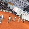 Cremona_Jersey_Show_2016_L32A5832