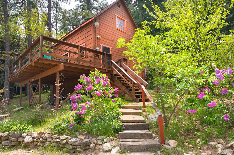 454 Willow Witch, -