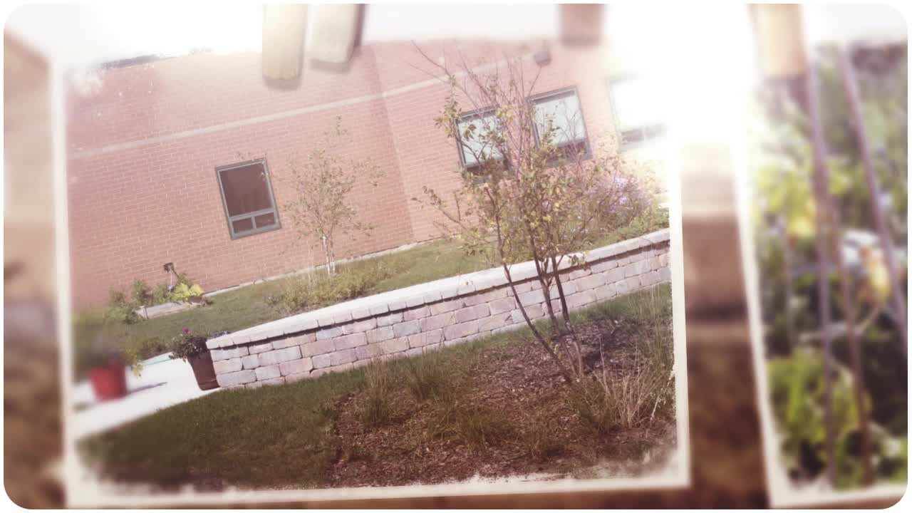Click to watch the video with photos of the courtyard garden.  (Video and photos from E-Journalism Club)