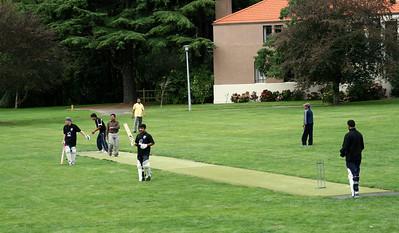Cricket 007.jpg