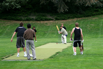 Cricket 133.jpg