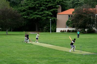 Cricket 057.jpg