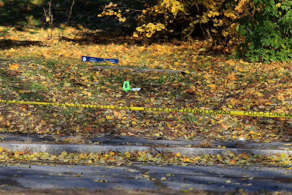 . The crime scene in the yard at 35 Wanoosnoc Road in Fitchburg on Wednesday morning, November 7, 2018. SENTINEL & ENTERPRISE/JOHN LOVE