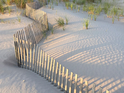 Dune Fence - Before